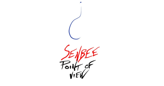 Point of view - Copertina